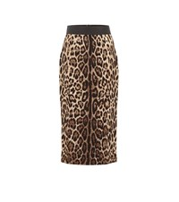 Dolce And Gabbana Leopard Crepe Pencil Skirt Brown