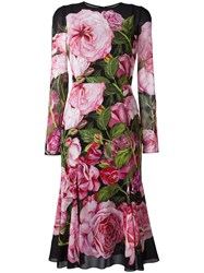 Dolce And Gabbana Rose Pink Print Dress