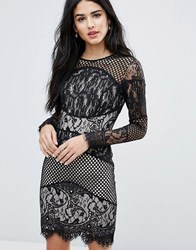 Forever Unique Block Lace Mini Bodycon Dress Black