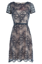 Catherine Deane Lace Dress Multicolor