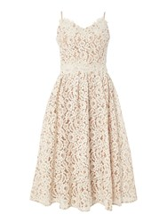 Little Mistress Fit And Flare Lace Midi Dress White