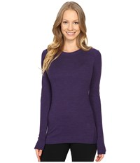 Smartwool Nts Mid 250 Crew Top Mountain Purple Women's Long Sleeve Pullover
