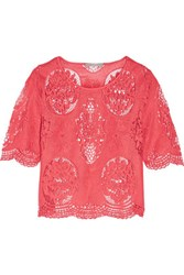 Tart Collections Louisa Lace Top Coral