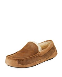Ugg Ascot Suede Slipper Bomber Brown