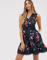 Ted Baker Mayo Skater Dress In Hedgerow Print Navy