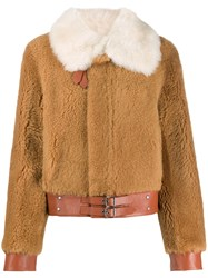 Coach Buckled Shearling Jacket Brown