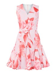 Untold V Neck Fit And Flare Rose Print Dress Pink