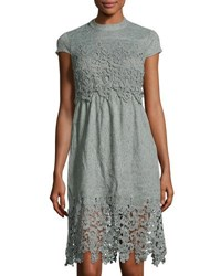 Star Crossed Lovers Short Sleeve Open Back Lace Dress Sage