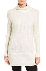Caslonr Women's Caslon Texture Knit Funnel Neck Tunic Oatmeal