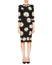 Dolce And Gabbana Daisy Print Cady Pencil Dress Black