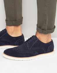 Frank Wright Brogues In Navy Suede Navy Blue