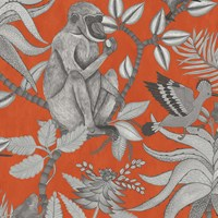 Cole And Son Savuti Wallpaper 109 1001