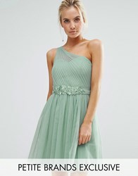 Little Mistress Petite Full Prom Tulle One Shoulder Mini Dress With Lace Applique Sage Green