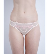 Passionata White Nights Mesh Thong Rose
