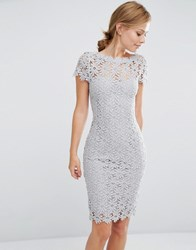 Paper Dolls Allover Lace Dress With Cap Sleeve Light Grey
