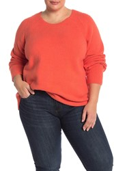 Eileen Fisher Solid Organic Cotton Blend Sweater Plus Size Rdlor
