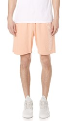 Obey Worldwide Outline Shorts Apricot