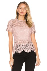 Karina Grimaldi Rosa Lace Top Blush