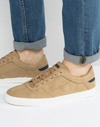 Pull And Bear Sneakers With Perforated Detail In Tan Tan