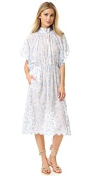 Zimmermann Zephyr Vine Dress Floral Embroidery