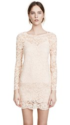 Loyd Ford Lace Mini Dress Powder