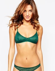 Lepel London Chelsea Triangle Bra Fern