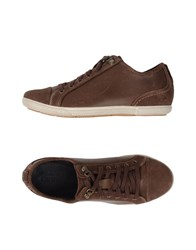 Timberland Footwear Low Tops And Trainers Women Cocoa