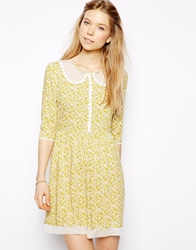 Little White Lies Ditsy Daisy Skater Dress With Mesh Collar Yellowdaisy