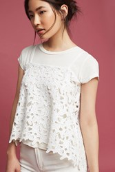Anthropologie Reef Lace Cami White
