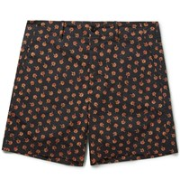 Gucci Clove Floral Print Cotton Shorts Black