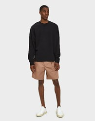 Christophe Lemaire Elasticated Shorts In Rosewood