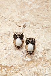 Forever 21 Faux Stone Owl Studs B.Gold Cream