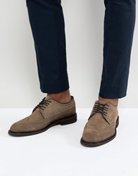 Selected Homme Suede Brogue Shoes Grey