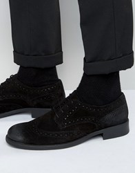 Frank Wright Suede Brogues Black