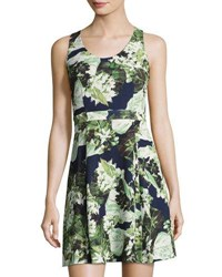 Cynthia Steffe Madison Sleeveless Floral Print Fit And Flare Dress Blue