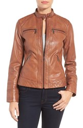 Bernardo Women's Leather Moto Jacket