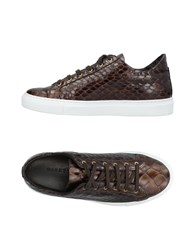 Dibrera By Paolo Zanoli Sneakers Dark Brown