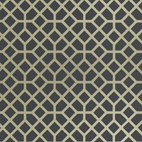Designers Guild Contarini Collection Pisani Wallpaper P603 04 Charcoal