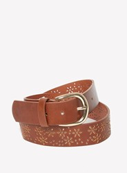Dorothy Perkins Tan Flower Punch Out Belt Brown