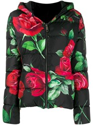 Dolce And Gabbana Rose Print Puffer Jacket Black