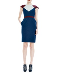 Raoul Clementine Colorblock Day Dress