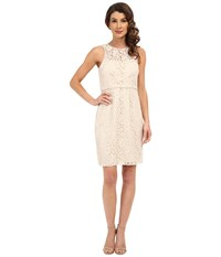 Donna Morgan Harlow Illusion Neck Lace Short Dress Fawn Women's Dress Beige