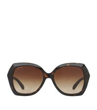 Bulgari Bvlgari Thick Frame Square Sunglasses Female Brown