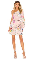 Yumi Kim Studio 54 Dress In Pink. Lovers Bouquet Pink