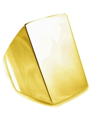 Tom Binns 'Clash' Signet Ring Metallic