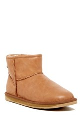 Australia Luxe Collective Cosy X Short Genuine Sheepskin Lined Boot Brown