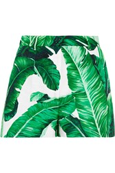 Dolce And Gabbana Printed Cotton And Silk Blend Brocade Shorts Green