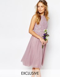 Maya High Neck Midi Tulle Dress With Tonal Delicate Sequins Pink