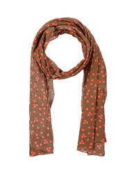 Robert Friedman Accessories Oblong Scarves Women Dark Brown
