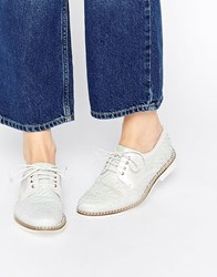 Miista Hayley Lace Up Leather Flat Shoes Galactic